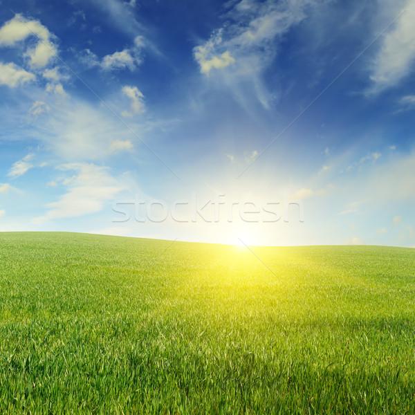 Gyönyörű naplemente zöld mező égbolt felhők Stock fotó © serg64