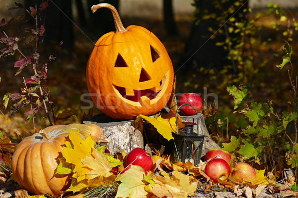 Halloween pumpkin on a stump in autumn forest. Stock photo © serg64