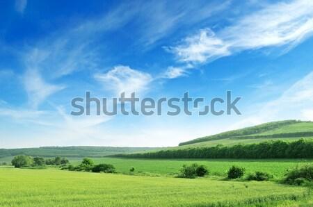 地形 青空 春 草 木材 自然 ストックフォト © Serg64