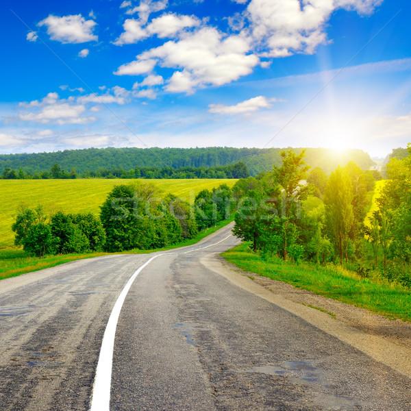 Vidéki út gyönyörű naplemente fa fű út Stock fotó © serg64