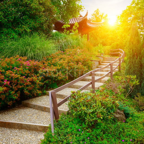 stone staircase in beautiful park at dawn Stock photo © serg64