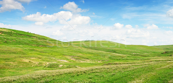 Mountainous terrain  Stock photo © serg64