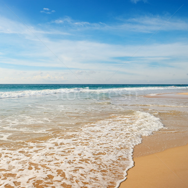 Ocean waves and blue sky Stock photo © serg64