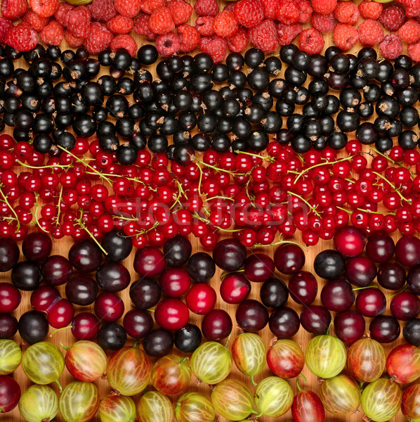 Collection of variety fruits (currants, gooseberries, raspberrie Stock photo © serg64