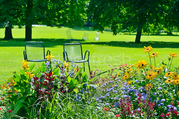 Chaise lounge for recreation near flowerbed Stock photo © Serg64