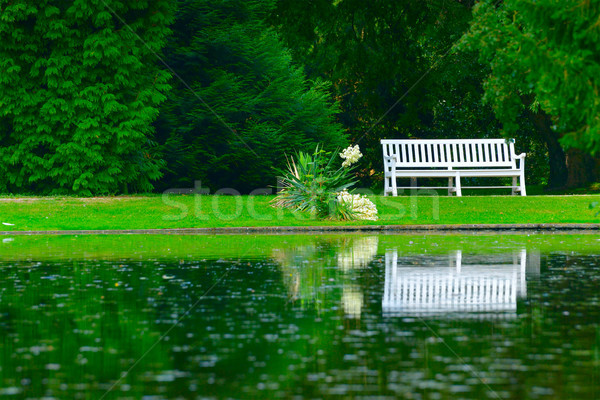 wooden bench on shore of picturesque lake Stock photo © serg64