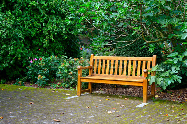 Wooden bench in beautiful park Stock photo © serg64