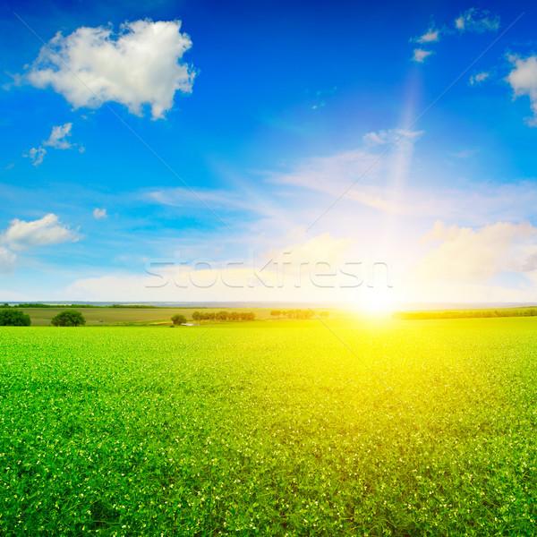 Güzel gündoğumu alan mavi gökyüzü gökyüzü bulutlar Stok fotoğraf © serg64