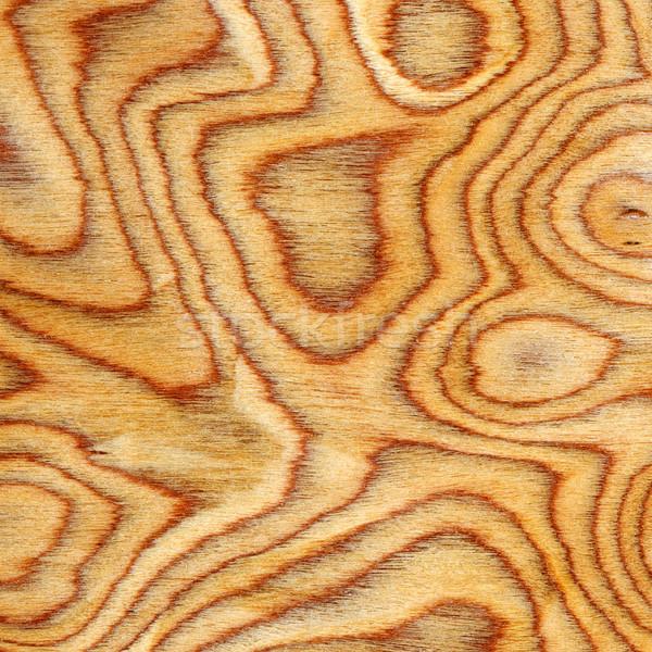 Bois texture arbre bois forêt résumé Photo stock © Serg64
