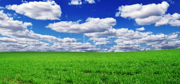 Alan mavi gökyüzü gökyüzü bulutlar çim doğa Stok fotoğraf © serg64