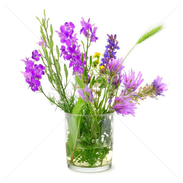 Wildflowers in glass isolated on white Stock photo © serg64