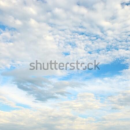 белый облака Blue Sky весны свет лет Сток-фото © serg64