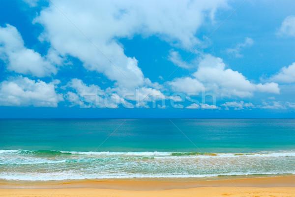 живописный побережье морем Blue Sky большой волны Сток-фото © serg64