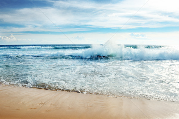 Ocean waves  Stock photo © serg64