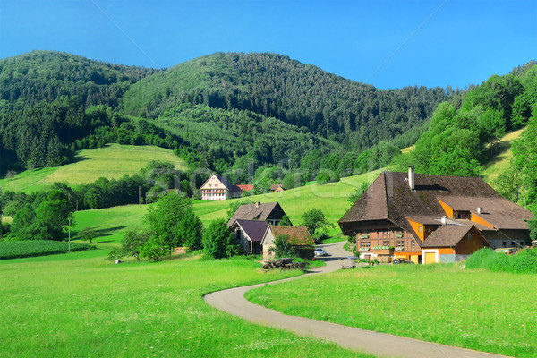 House in the mountains Stock photo © Serg64