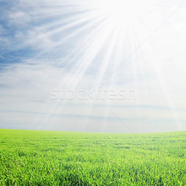 Campo sol céu nuvens grama pôr do sol Foto stock © Serg64