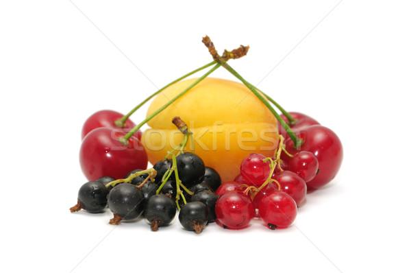 Frutas isolado branco natureza grupo outono Foto stock © Serg64