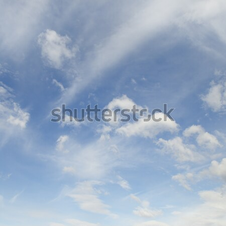 cirrus clouds in the blue sky Stock photo © serg64