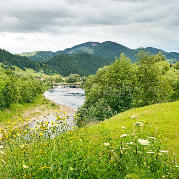 River in the mountains Stock photo © serg64