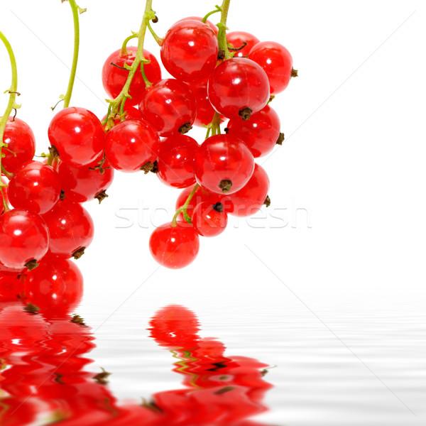 Piros ribiszke izolált fehér levél gyümölcs Stock fotó © Serg64