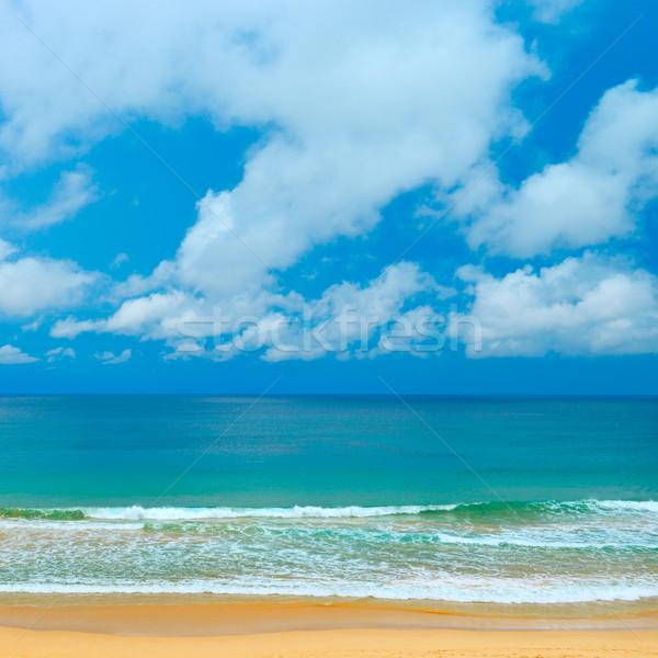 Picturesque coast sea Stock photo © Serg64