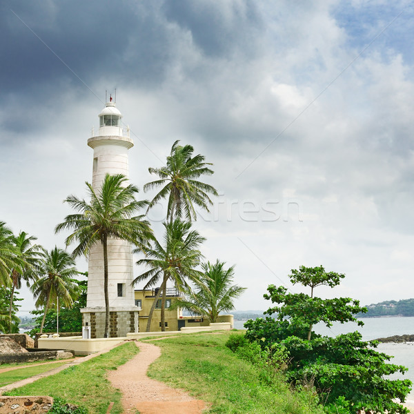 Lighthouse and palm trees Stock photo © serg64