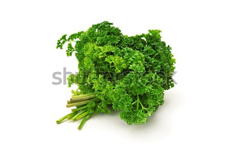 Peterselie bos geïsoleerd witte voedsel achtergrond Stockfoto © serg64