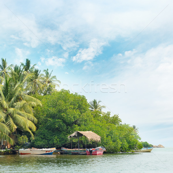 Equatorial forest and boats on the lake Stock photo © serg64