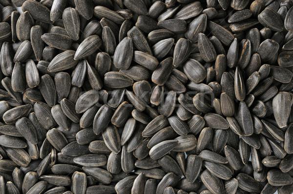ヒマワリ 種子 テクスチャ 自然 グループ 工場 ストックフォト © Serg64