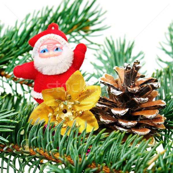 Noel dekorasyon kış kırmızı oyuncak altın Stok fotoğraf © serg64