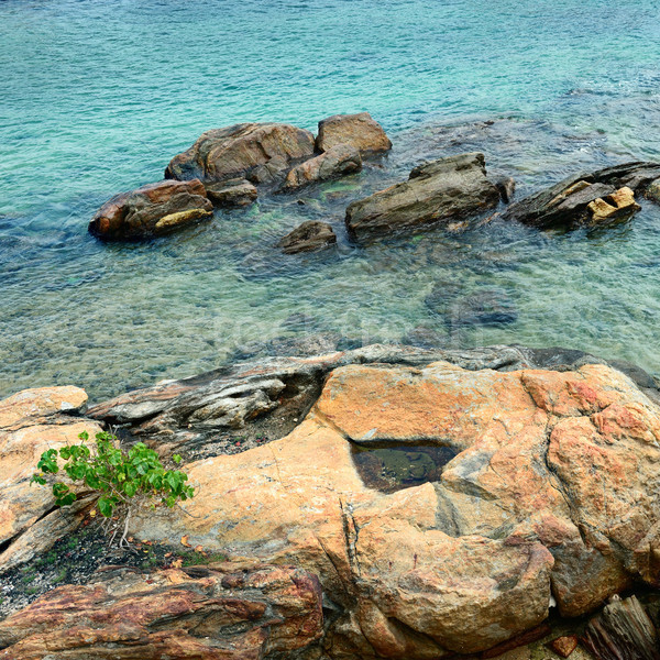 Beautiful stones in the ocean Stock photo © serg64