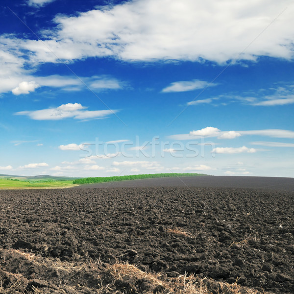 arable land Stock photo © Serg64