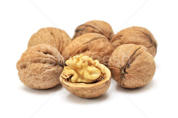 walnut  Stock photo © Serg64