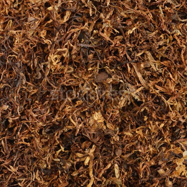 Secado fumar tabaco primer plano macro vista Foto stock © Serg64