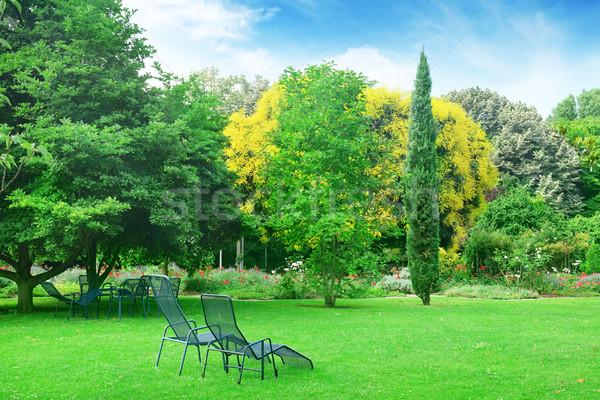 Lounge стульев расслабляющая лет парка цветы Сток-фото © Serg64