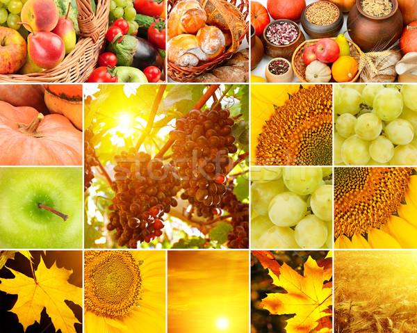 Foto stock: Outono · colagem · frutas · legumes · amarelo · folhas