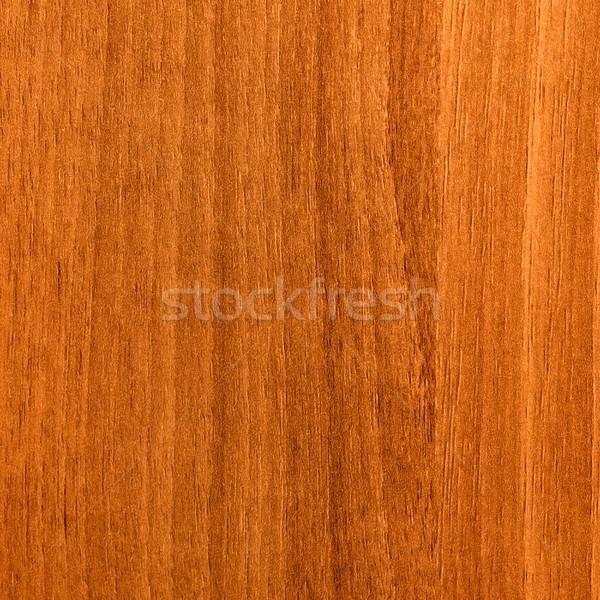 Marrón estructura posible árbol resumen Foto stock © Serg64