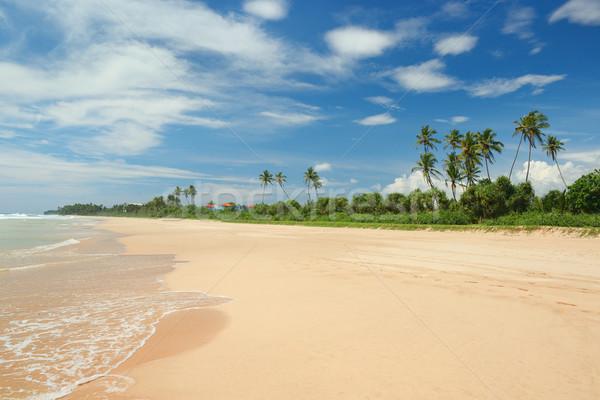 beautiful coastline and blue sky Stock photo © Serg64