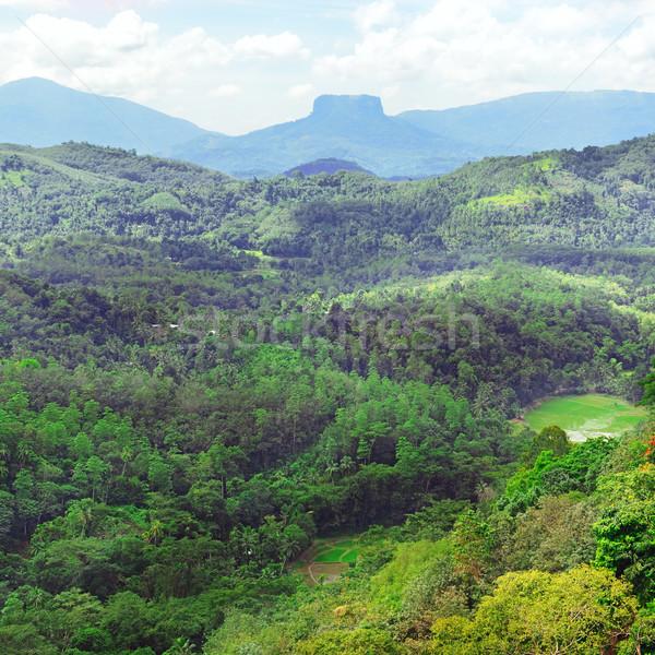 Bergen eiland Sri Lanka gedekt bos hemel Stockfoto © serg64