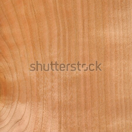 Wooden texture background Stock photo © serg64