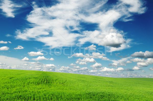 Yeşil alan bahar bulutlar çim güneş Stok fotoğraf © Serg64
