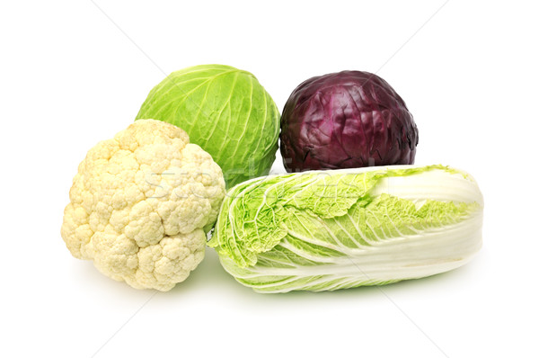 cabbages Stock photo © Serg64