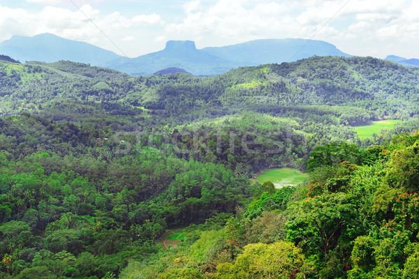 гор острове Шри Ланка покрытый лес небе Сток-фото © serg64