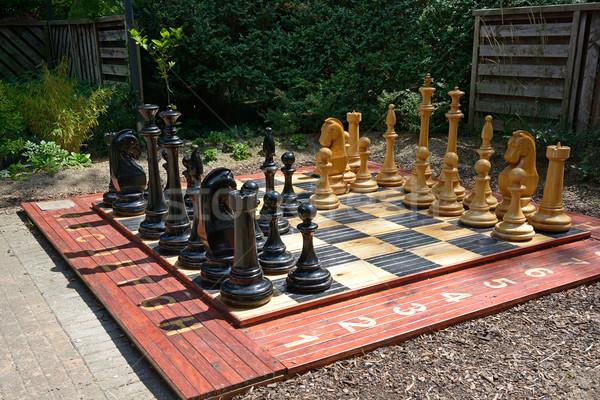 Satranç tahtası park spor arka plan grup kentsel Stok fotoğraf © Serg64