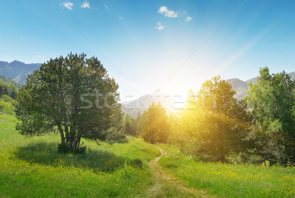 Stock photo: Beautiful sunrise in the mountains