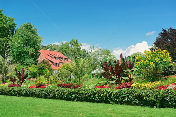 picturesque lawn in the park Stock photo © serg64