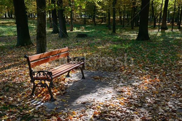 Banco parque luz solar árvore grama Foto stock © serg64