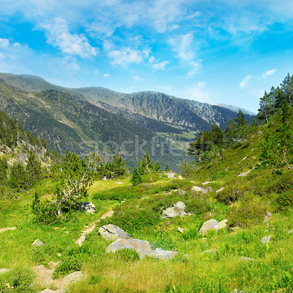 picturesque valley in high mountains Andorra, Pyrenees Stock photo © Serg64
