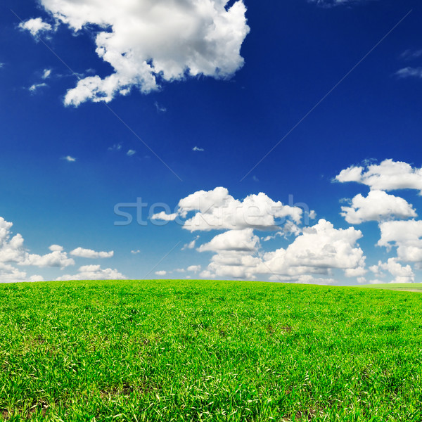 Weide voorjaar gedekt wolken gras zon Stockfoto © Serg64