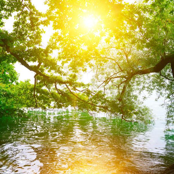 ярко Восход берега живописный озеро воды Сток-фото © serg64